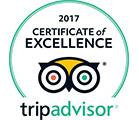 (2017)Trip Advisor